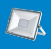 Floodlight, LED, 30W ZY600