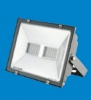 Floodlight, LED, 70W, ZY500